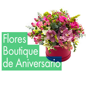 Floristerias Boutique